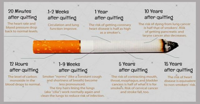 Here Is What Happens To Your Body When You Quit Smoking